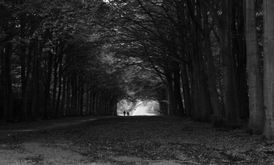 Holkham Norfolk