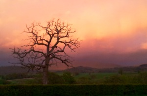evening black mountains by Glasbury