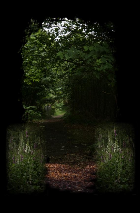 path copy